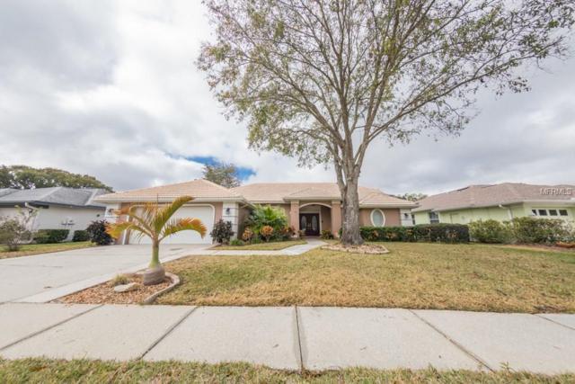 2692 Saddlewood Lane, Palm Harbor, FL 34685 (MLS #U7844427) :: Chenault Group