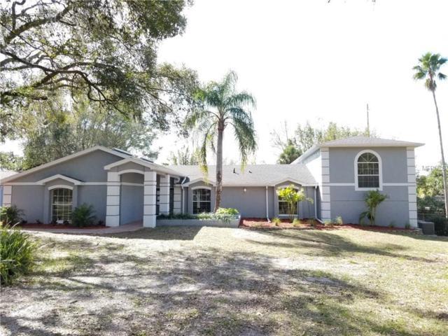 10157 Grove Drive, Port Richey, FL 34668 (MLS #U7844483) :: Griffin Group