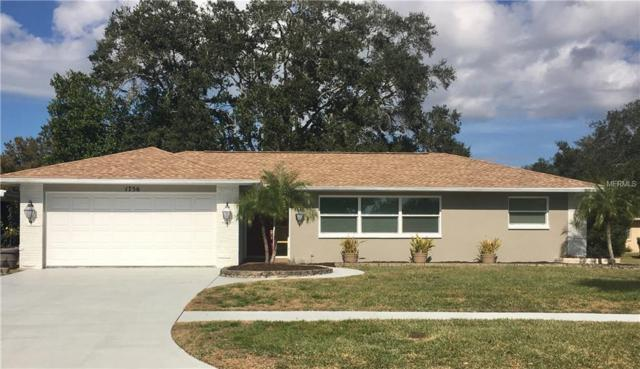 1756 Stardust Drive, Clearwater, FL 33755 (MLS #U7844555) :: Burwell Real Estate