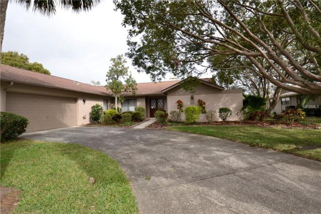460 Holly Hill Road, Oldsmar, FL 34677 (MLS #U7844679) :: Team Pepka