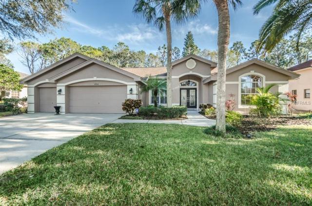 4764 Brayton Terrace S, Palm Harbor, FL 34685 (MLS #U7845176) :: Team Virgadamo