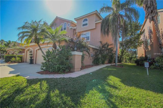 1696 Arabian Lane, Palm Harbor, FL 34685 (MLS #U7845269) :: Griffin Group