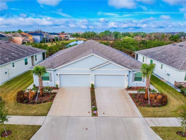32911 Windelstraw Drive, Wesley Chapel, FL 33545 (MLS #U7847163) :: Team Bohannon Keller Williams, Tampa Properties