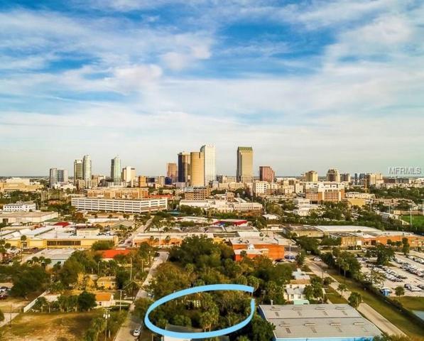 1324 W Fig Street, Tampa, FL 33606 (MLS #U7847189) :: G World Properties