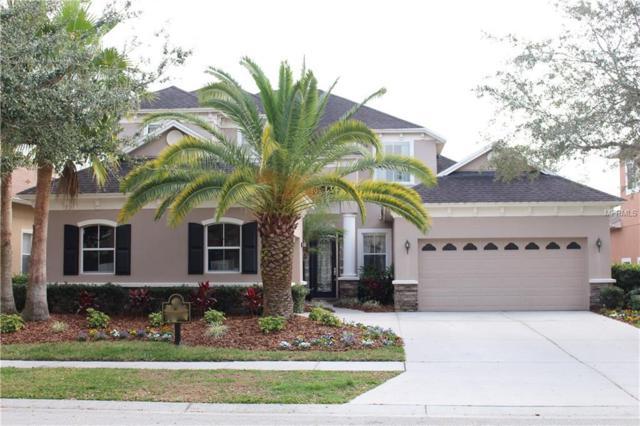 20209 Moss Hill Way, Tampa, FL 33647 (MLS #U7847349) :: Team Bohannon Keller Williams, Tampa Properties