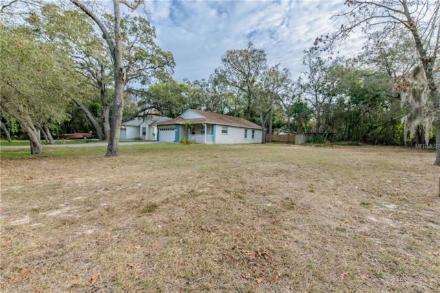Poinsettia Avenue, Tarpon Springs, FL 34689 (MLS #U7847438) :: Griffin Group