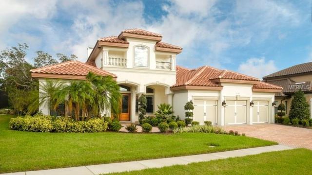 2141 Majestic Oaks Boulevard, Clearwater, FL 33759 (MLS #U7847835) :: Cartwright Realty