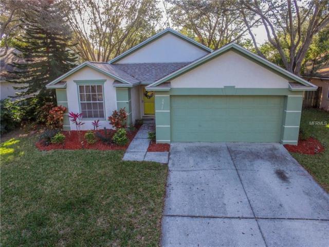 2917 Shannon Circle, Palm Harbor, FL 34684 (MLS #U7848128) :: Delgado Home Team at Keller Williams