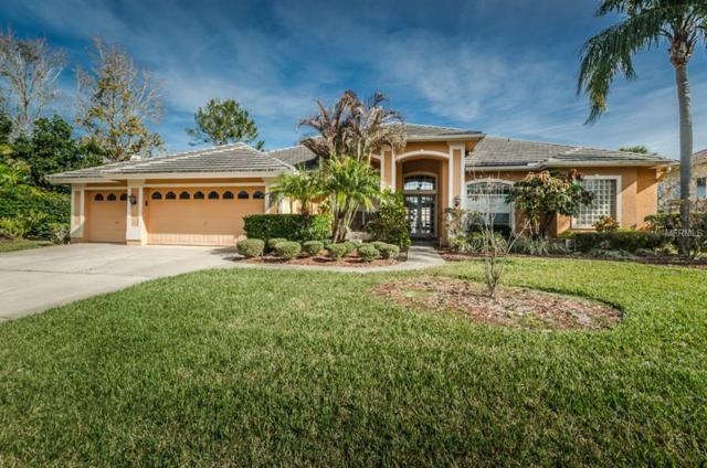 3833 Executive Drive, Palm Harbor, FL 34685 (MLS #U7848289) :: Delgado Home Team at Keller Williams