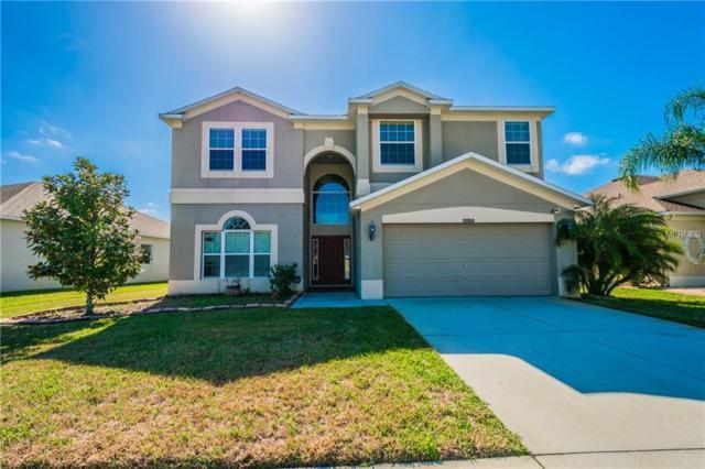 18904 Narimore Drive, Land O Lakes, FL 34638 (MLS #U7848365) :: Cartwright Realty