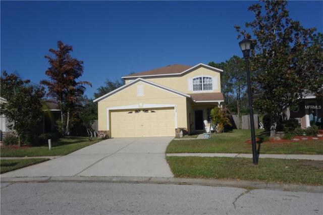 10738 Navigation Drive, Riverview, FL 33579 (MLS #U7848466) :: KELLER WILLIAMS CLASSIC VI