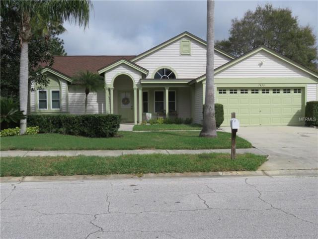 7823 Grimsby Lane, New Port Richey, FL 34655 (MLS #U7848532) :: Griffin Group