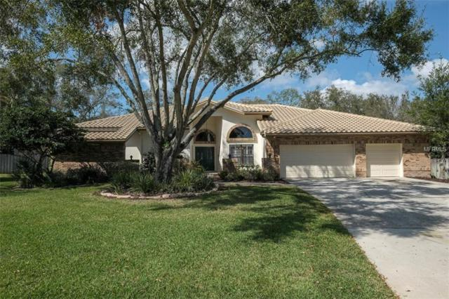 3016 Ashland Terrace, Clearwater, FL 33761 (MLS #U7848568) :: Griffin Group
