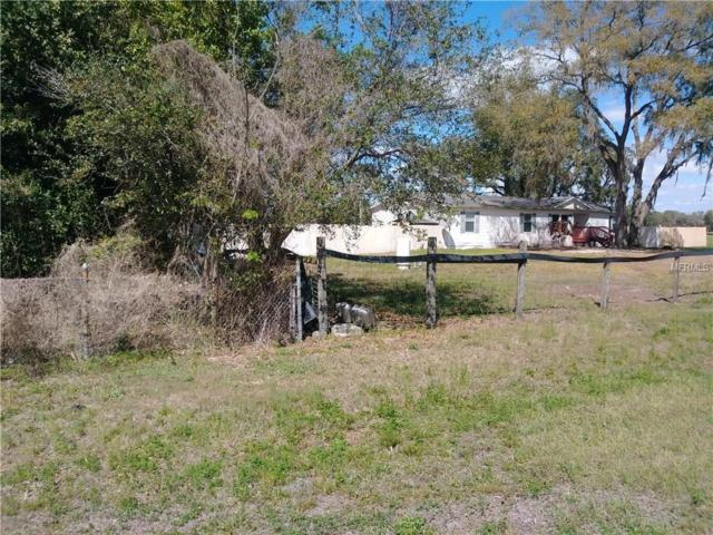 16707 Us Highway 41, Spring Hill, FL 34610 (MLS #U7848773) :: Dalton Wade Real Estate Group