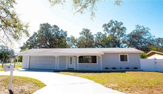 6200 52ND Avenue N, St Petersburg, FL 33709 (MLS #U7848814) :: NewHomePrograms.com LLC