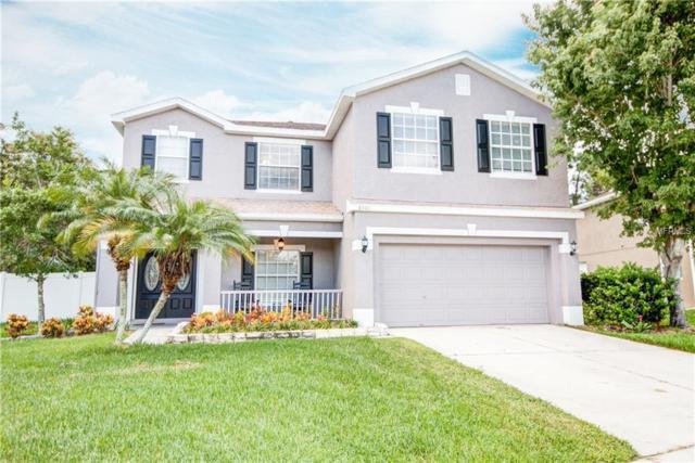 8501 Tidal Bay Lane, Tampa, FL 33635 (MLS #U7848822) :: Team Turk Real Estate