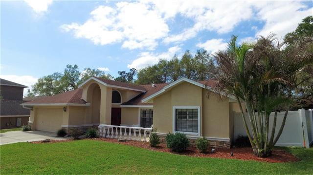 622 Berrywood Way, Palm Harbor, FL 34683 (MLS #U7848837) :: Team Turk Real Estate