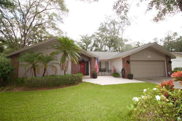 1706 Tall Pine Circle, Safety Harbor, FL 34695 (MLS #U7848840) :: NewHomePrograms.com LLC