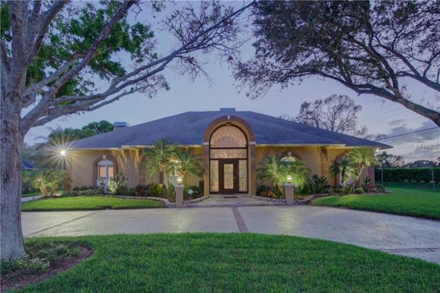 8680 Burning Tree Circle, Seminole, FL 33777 (MLS #U7849131) :: Dalton Wade Real Estate Group