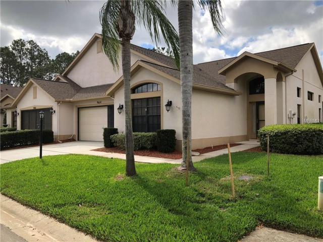 9614 Sweeping View Drive, New Port Richey, FL 34655 (MLS #U7849221) :: The Fowkes Group