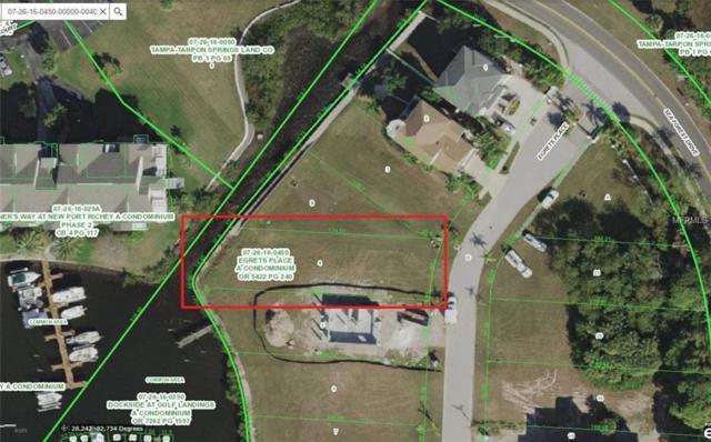 5705 Egrets Place, New Port Richey, FL 34652 (MLS #U7849279) :: Team Bohannon Keller Williams, Tampa Properties