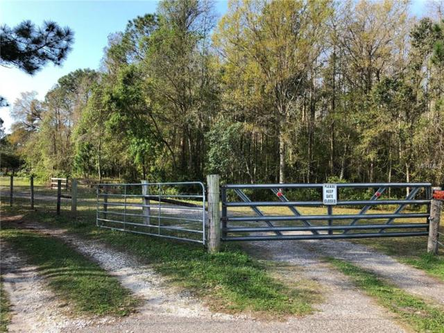 15110 State Road 54, Odessa, FL 33556 (MLS #U7850388) :: Griffin Group