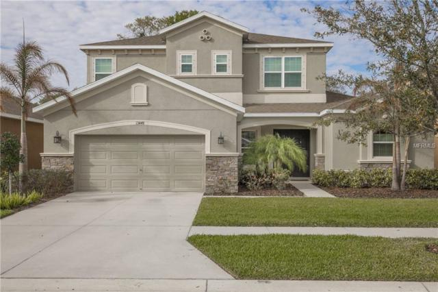 13448 Canopy Creek Drive, Tampa, FL 33625 (MLS #U7850507) :: Jeff Borham & Associates at Keller Williams Realty