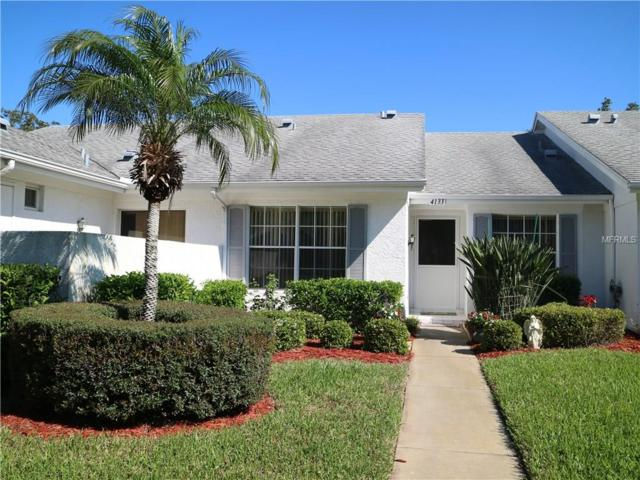 4133 Castlewood Drive, Holiday, FL 34691 (MLS #U7850510) :: Griffin Group