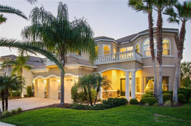 17939 Bahama Isle Circle, Tampa, FL 33647 (MLS #U7850530) :: Team Bohannon Keller Williams, Tampa Properties