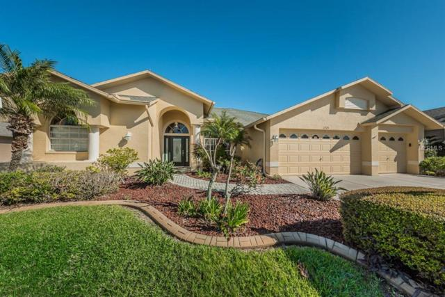 1725 Winding Willow Drive, Trinity, FL 34655 (MLS #U7850745) :: Jeff Borham & Associates at Keller Williams Realty