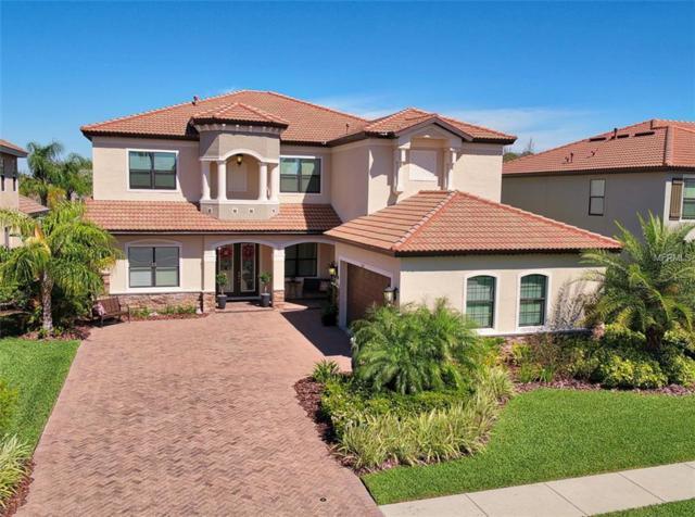 2591 Grand Cypress Boulevard, Palm Harbor, FL 34684 (MLS #U7850868) :: The Duncan Duo Team