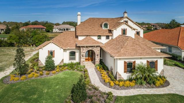 874 Skye Lane, Palm Harbor, FL 34683 (MLS #U7851020) :: Medway Realty