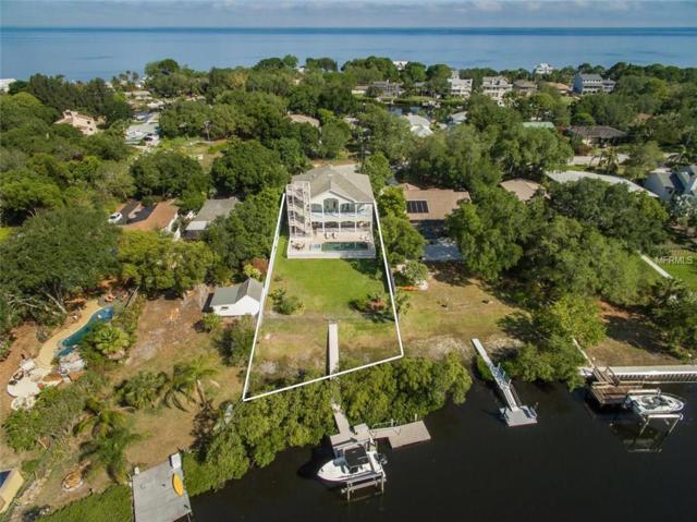 3208 Bluff Boulevard, Holiday, FL 34691 (MLS #U7851138) :: The Duncan Duo Team