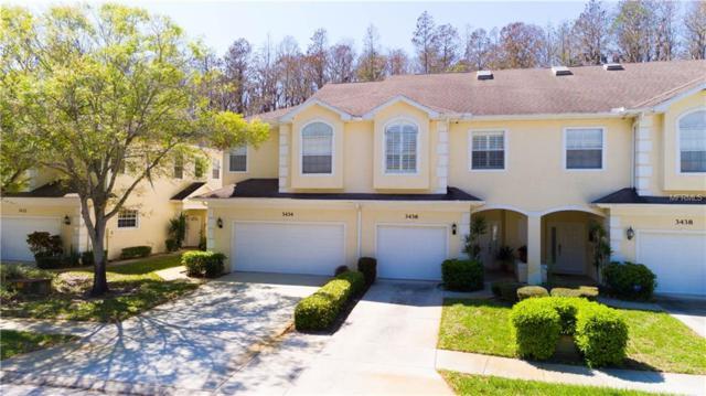 3434 Primrose Way, Palm Harbor, FL 34683 (MLS #U7851168) :: Griffin Group