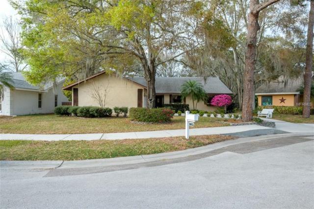 103 Tanglewood Court, Safety Harbor, FL 34695 (MLS #U7851371) :: Jeff Borham & Associates at Keller Williams Realty