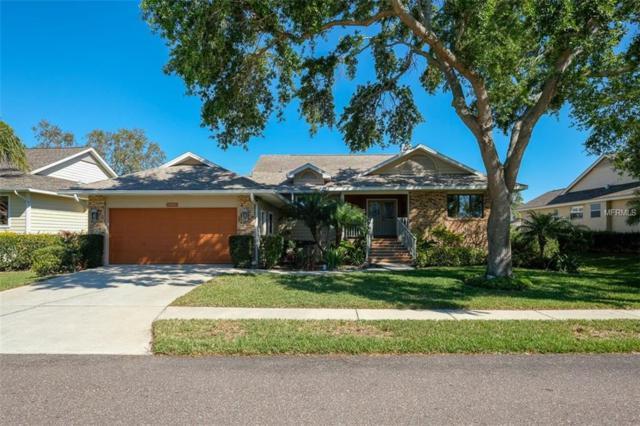 1009 Marsh View Lane, Tarpon Springs, FL 34689 (MLS #U7851585) :: The Duncan Duo Team