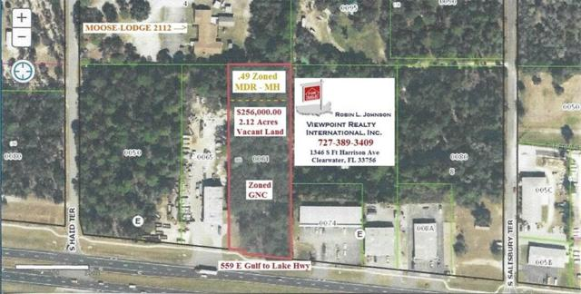 559 E Gulf To Lake Highway, Lecanto, FL 34461 (MLS #U7851718) :: Griffin Group