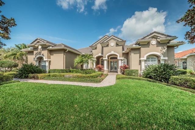 3775 Douglas Place, Palm Harbor, FL 34683 (MLS #U7851784) :: Delgado Home Team at Keller Williams