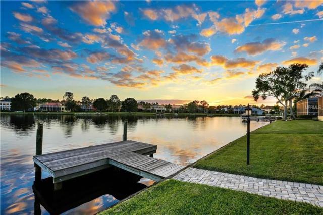 10513 Bermuda Isle Drive, Tampa, FL 33647 (MLS #U7851843) :: Team Bohannon Keller Williams, Tampa Properties