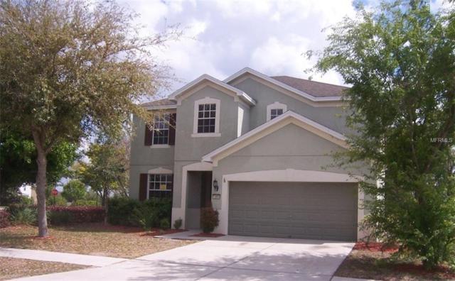 13850 Trull Way, Hudson, FL 34669 (MLS #U7852034) :: Jeff Borham & Associates at Keller Williams Realty