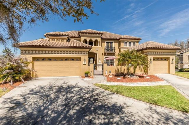 20210 Cane River Way, Tampa, FL 33647 (MLS #U7852094) :: The Duncan Duo Team