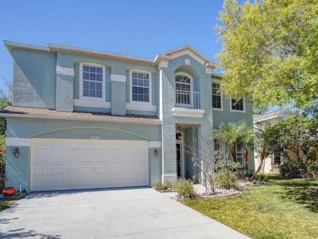 4974 Ridgemoor Circle, Palm Harbor, FL 34685 (MLS #U7852139) :: Chenault Group