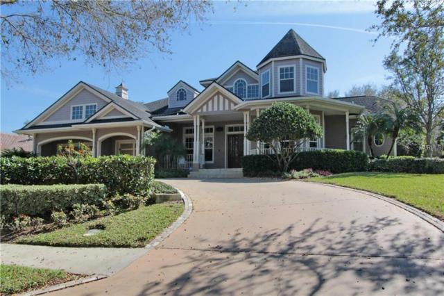 1154 Skye Lane, Palm Harbor, FL 34683 (MLS #U7852371) :: Burwell Real Estate