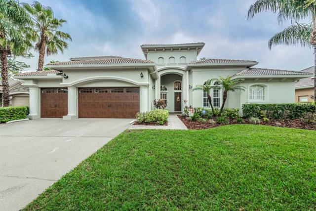 21303 Sky Vista Drive, Land O Lakes, FL 34637 (MLS #U7852560) :: Arruda Family Real Estate Team