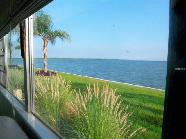 7 Dunoon Place #115, Dunedin, FL 34698 (MLS #U7852586) :: Dalton Wade Real Estate Group