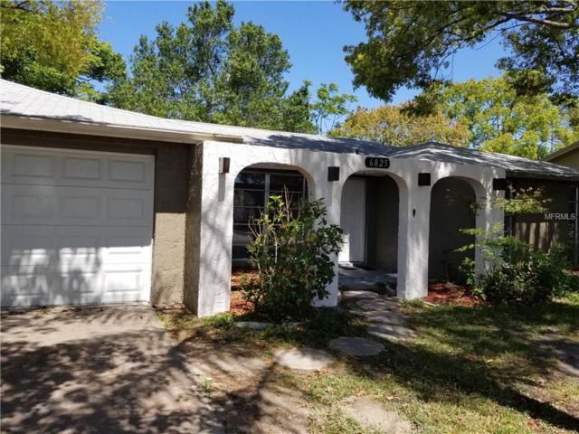 6825 Amarillo Street, Port Richey, FL 34668 (MLS #U7852653) :: Arruda Family Real Estate Team