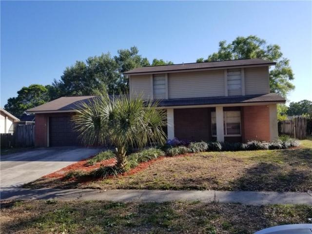 6610 Reef Circle, Tampa, FL 33625 (MLS #U7852665) :: BCA Realty