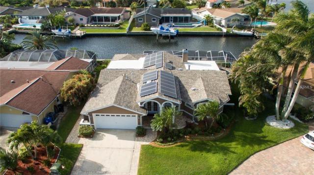 1320 52ND Avenue NE, St Petersburg, FL 33703 (MLS #U7852689) :: Burwell Real Estate