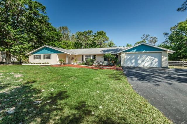 6341 Bellingham Court, New Port Richey, FL 34655 (MLS #U7852715) :: Chenault Group