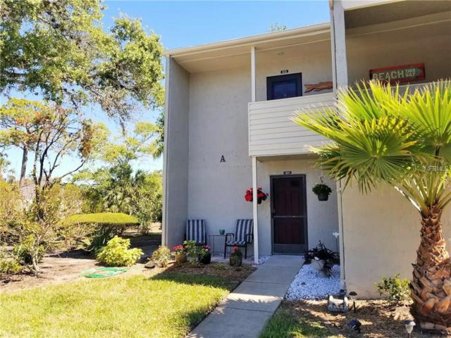 401 Windrush Bay Drive #401, Tarpon Springs, FL 34689 (MLS #U7852723) :: Chenault Group